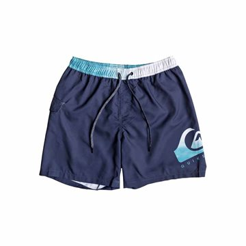 Quiksilver Critical Volley Badeshorts til mænd