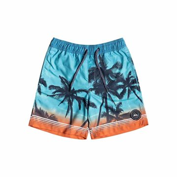 Quiksilver Paradise Volley Youth Badeshorts til børn