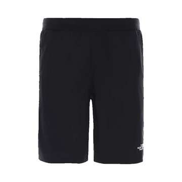 The North Face Train n Logo Shorts til mænd